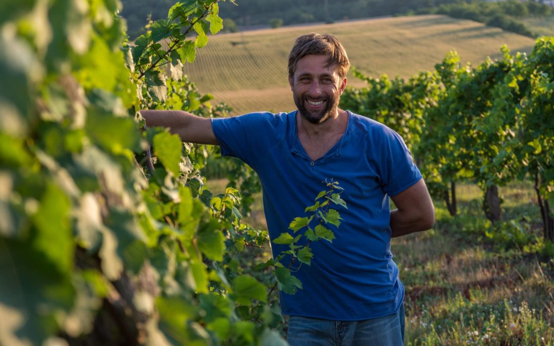 Tastes, Wines…  – Interview with Mark Csepreghy Winemaker